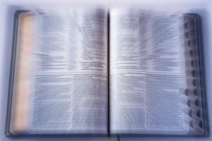 Biblia-Zoom