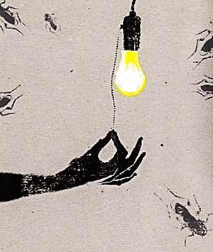 insectos-luz